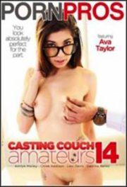Casting Couch Amateurs 14 [PornPros]